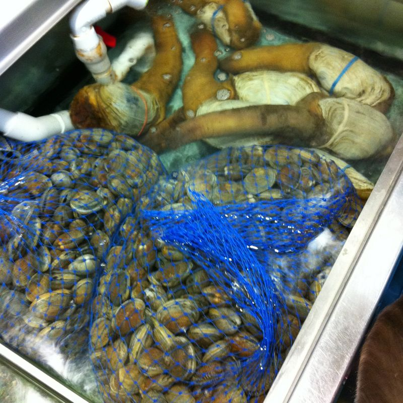 Uwajimaya/Clams and Geoduck