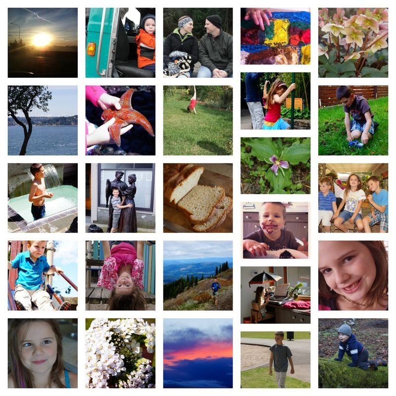 A Year's Photo Collage