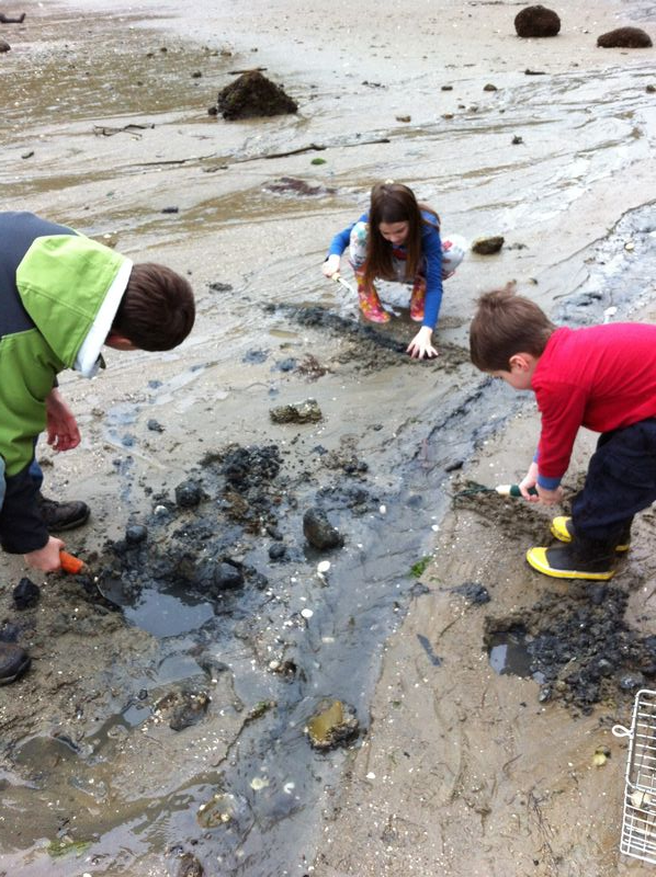 Kids digging for Clams